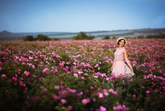 Beautiful young woman with straw hat looking at sunset in the roses field. Aroma, cosmetics and perfume advertising royalty free stock images