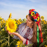 Beautiful young woman with sunflower Royalty Free Stock Image