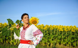 Beautiful young woman on the sunflowers field. Beautiful young woman in shirt holding a sunflower and looks into the distance Royalty Free Stock Photo