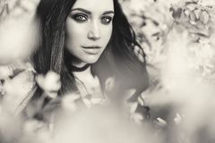 Beautiful young woman surrounded by flowers of apple-tree. Black and white outdoor fashion photo of beautiful young woman surrounded by flowers of apple-tree Royalty Free Stock Photography