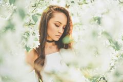 Beautiful young woman surrounded by flowers of apple-tree. Outdoor fashion photo of beautiful young woman surrounded by flowers of apple-tree. Spring blossom Royalty Free Stock Photo