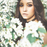 Beautiful young woman surrounded by flowers of apple-tree Royalty Free Stock Image