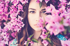 Beautiful young woman surrounded by flowers Stock Photography