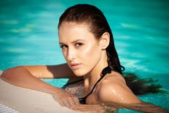 Beautiful young woman swimming in the pool on a hot summer day royalty free stock photography