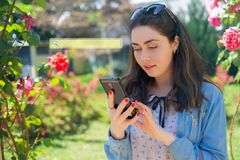 Beautiful young woman typing on phone. Roses on the background. Blank for Copy space. Sign of searching. Concept of modern. Technology and internet royalty free stock photography
