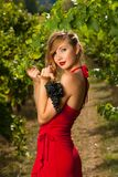 Beautiful young woman in vineyard holding a grape Royalty Free Stock Photography