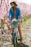 Beautiful young woman with a vintage bike in the field. Royalty Free Stock Images