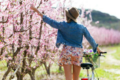 Beautiful young woman with a vintage bike in the field. Royalty Free Stock Photos