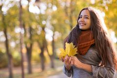 Beautiful woman in the autumn park stock photography
