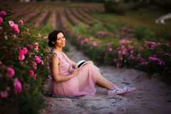 Beautiful young woman with dark hair sitting in the roses field. Aroma, cosmetics and perfume advertising stock photography