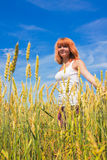Beautiful young woman walking at wheat field Stock Photos
