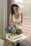 Beautiful young woman watering plants. Lovely brunette woman watering a plant in her living room Stock Photo