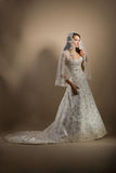 The beautiful young woman in a wedding dress. The beautiful young woman posing in a wedding dress Stock Photography