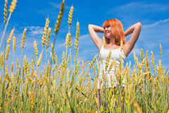 Beautiful young woman at wheat field Royalty Free Stock Photos