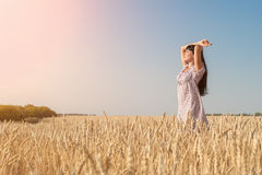 Beautiful young woman in the wheat field. At sunset Royalty Free Stock Photos