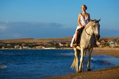 Beautiful young woman in white dress by the sea with horse royalty free stock photos