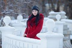 Beautiful young woman at winter Stock Image