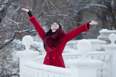 Beautiful young woman at winter Stock Photography