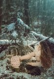 Young woman in winter forest. Beautiful young woman in winter forest Stock Photography