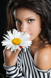 Beautiful Young Woman With Chamomile In Hand Royalty Free Stock Photography
