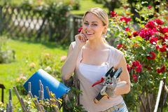 Beautiful young woman working with bush roses with horticultural. Tools in garden on sunny day Stock Image
