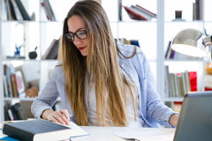 Beautiful young woman working in her office. Portrait of beautiful young woman working in her office Royalty Free Stock Photography