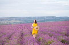 Beautiful young woman in yellow dress walking and having fun in purple flower lavander field. Freedom stock images