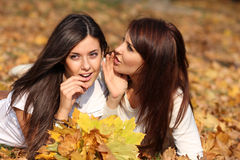 Beautiful young women Royalty Free Stock Images
