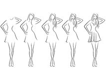 Beautiful young women contour in drawing sequence Stock Images