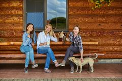 Young women drinking tea stock photos