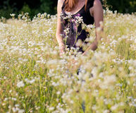 Beautiful young women standing in meadow Stock Image