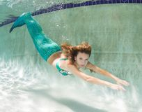 Beautiful young women in a swimsuit, or mermaids tail above and Stock Photos