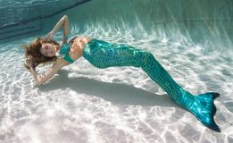 Beautiful young women in a swimsuit, or mermaids tail above and Stock Image
