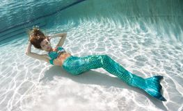 Beautiful young women in a swimsuit, or mermaids tail above and Royalty Free Stock Photo