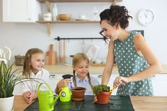 Beautiful young women with two little cute daughters planting flower in pot royalty free stock image