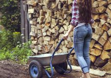 Beautiful youngcountry  woman on firewood background Stock Photo