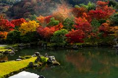 Zen garden decorated with rock, pond and autumn trees in Kyoto,. Beautiful Zen Garden pond with multi-color autumn trees, Kyoto Japan Stock Photo