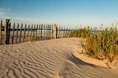 Beautiful zen sandy beach in sunset blue sky with vegetation and wooden fence, hendaye, basque country, france Royalty Free Stock Image