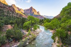 Beautiful Zion national park on sunny day,utah,usa. royalty free stock images