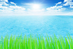 Beautifulblue sky with fresh sea and green grass Royalty Free Stock Images