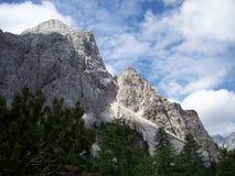 Beautifull岩石山在从斯洛文尼亚的7月 免版税图库摄影