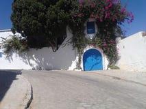 Beautifull突尼斯 库存照片