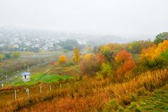 Yellow autumn landscape Royalty Free Stock Images