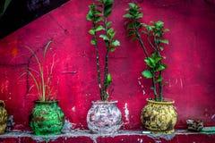 A beautifull colourfull pot at jogja yogyakarta indonesia. Java Stock Photo