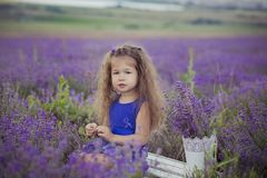 Beautifull cute blond Young beauty girl in blue jeans and purple shirt posing to camera with cosy smile face.Wellbeing time spendi Stock Photo