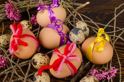 Beautifull Easter eggs nest Royalty Free Stock Photo