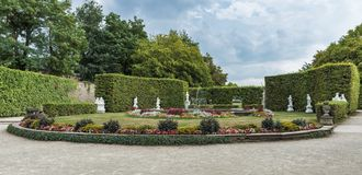 Beautifull english garden with green plants and flowers