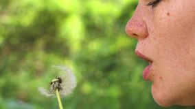 Beautifull girl blow on dandelion slow motion. Beautifull girl blow on dandelion stock footage