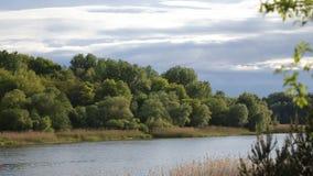 Beautifull lake in Ukraine.Nature is wonderfull stock video footage