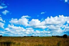 Beautifull landscape Stock Photos